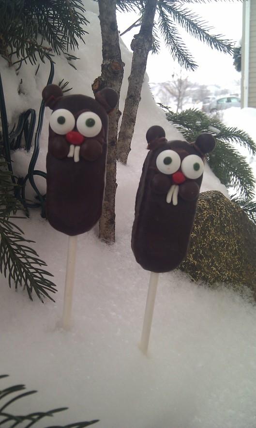 snowy hogs