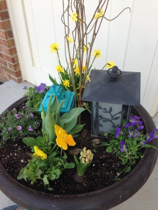 pansies, tulips, and daffodils