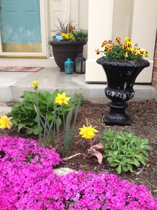 Still a few spring flowers blooming